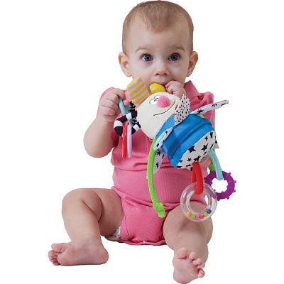 Jucarie educativa - Baietelul Kooky de la Taf Toys
