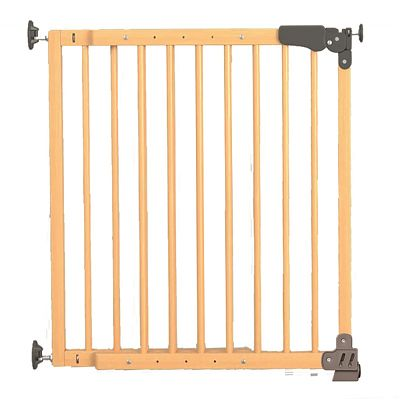 Poarta de siguranta T-GATE