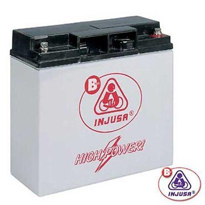 Injusa Acumulator 12V pentru masinute copii